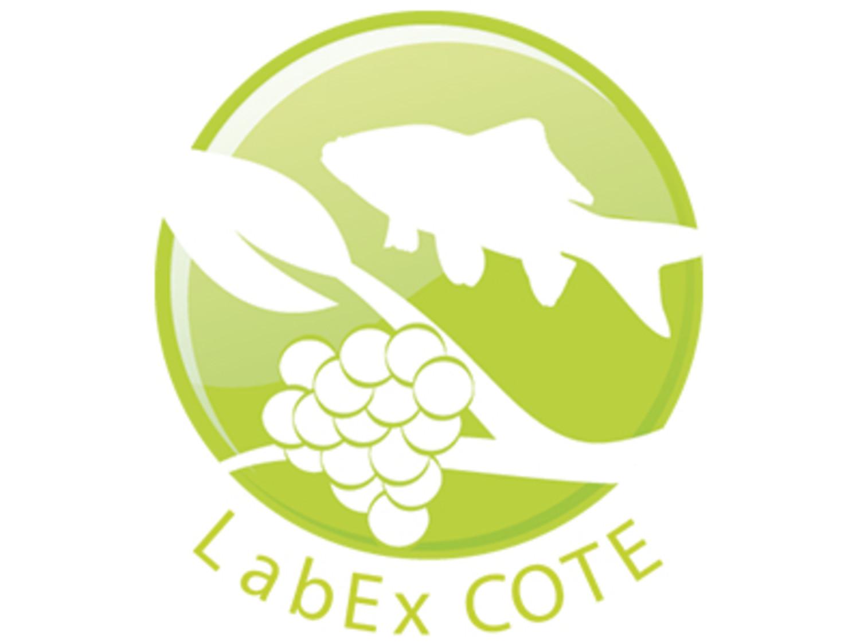 Logo_LabEx_COTE_opengraphimage.jpg