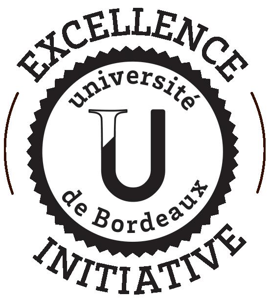 excellence_initiative_EN_sans_arriere_plan_2.png